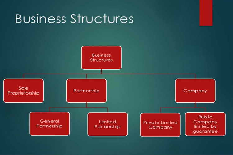 Create the structure for your business