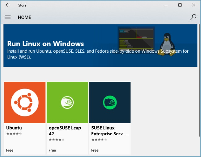 Linux Distributions on Windows