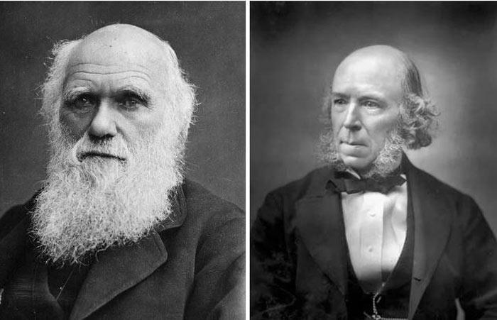 داروین مبدع عبارت بقای اصلح نیست