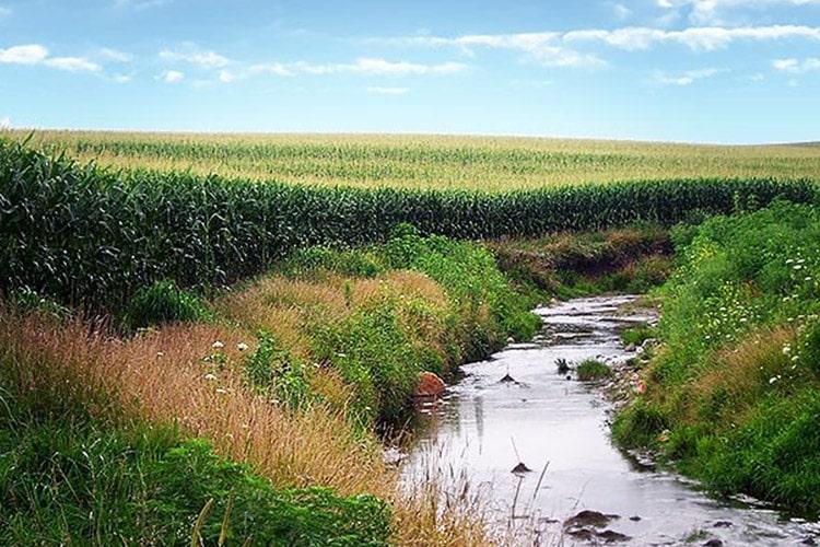 تاثیر درازمدت فعالیتهای کشاورزی روی کیفیت آب