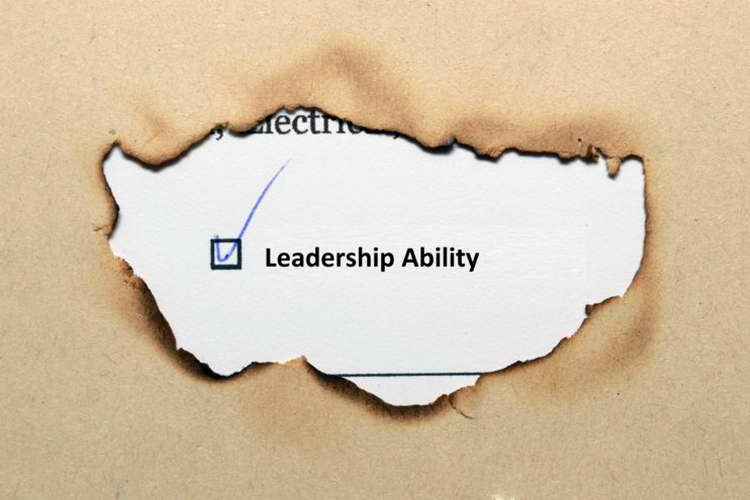 Highly Efficient Leaders