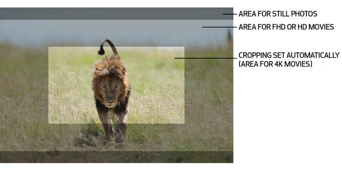 cropping 4k video