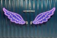 نمونه عکس دوربین تله فوتو آیفون ۱۲ پرو اپل در تاریکی - بال فرشته باغ کتاب تهران