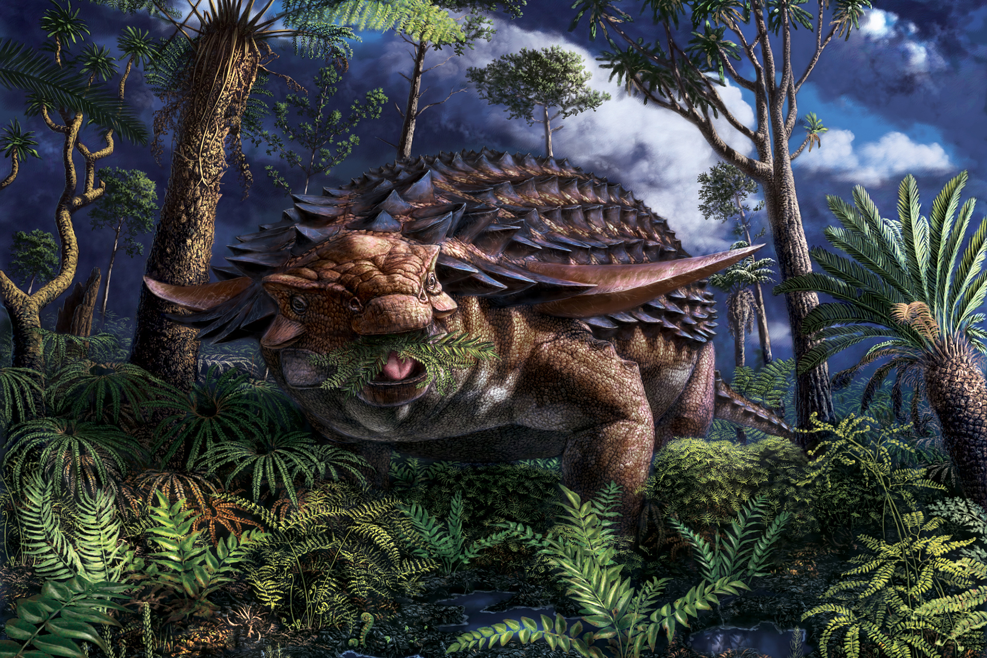 coolest dinosaur findings of 2020 / Interesting dinosaur discoveries