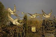 نمونهعکس دوربین اصلی آیفون ۱۲ پرو مکس در تاریکی - پرده زندهشدن پرندگان نزد حضرت ابراهیم - پارک آب و آتش تهران