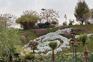 نمونه عکس دوربین تلهفوتو آیفون ۱۲ پرو مکس در طول روز - منظرهای از باغ کتاب تهران