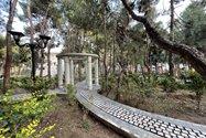 نمونهعکس دوربین اولتراواید آیفون ۱۲ پرو مکس - نمایی در پارک صبا تهران