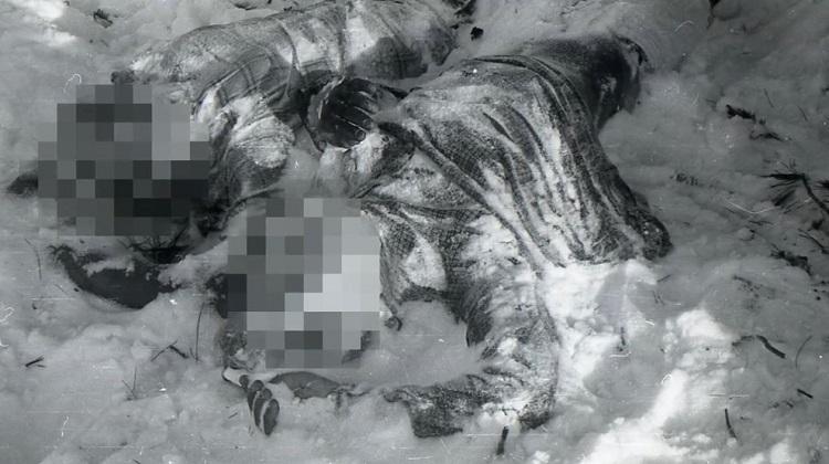 حادثه گذرگاه دیتلوف: اولین اجساد