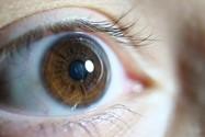 نمونه عکس لومیکس G9، لنز ماکرو ۳۰، f/2.8، ایزو ۲۰۰۰، ۱/۵۰ ثانیه
