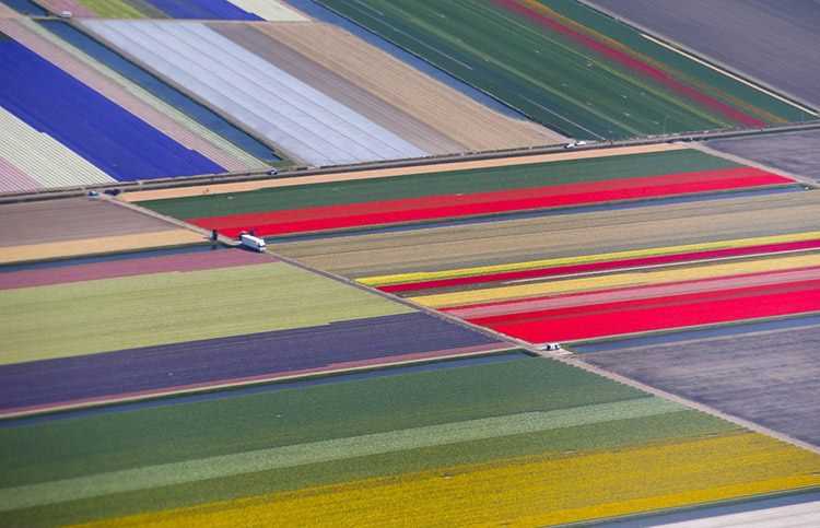 8 an aerial view of flower fields is seen near the keukenhof park also known as the garden of europe in lisse the netherlands s 1a19d