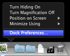 Dock-Settings