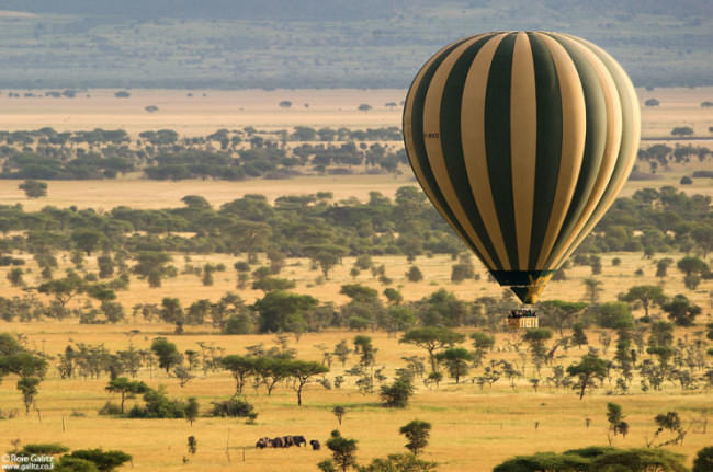 Top-10-Hot-Air-Ballooning-serengeti-Photo-by-Roie-Galitz-740x491