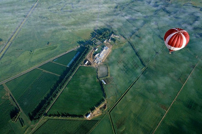 Top-10-Hot-Air-Ballooning-yarra4