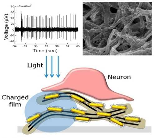 nanotube-film-optogenetics-retina-vision-0