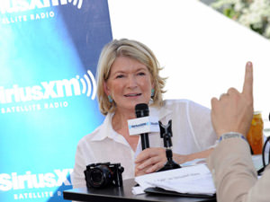 martha stewart you can do anything