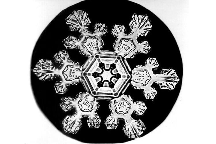 Bentley Snowflake11
