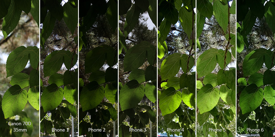 LG G4 vs Galaxy S6 vs iPhone 6 Camera