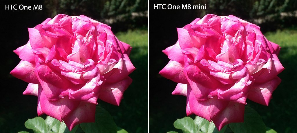 m8-and-m8-mini-comparison-1